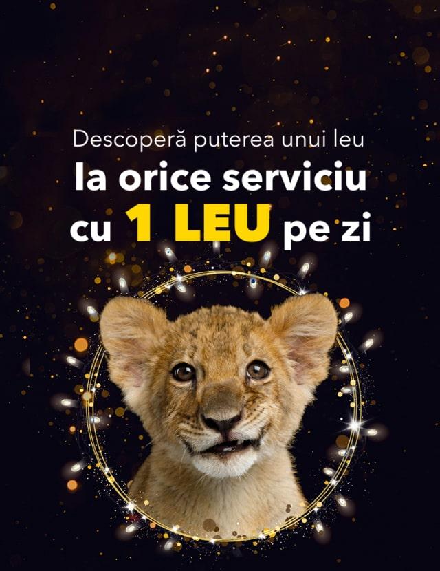 Descoperă puterea unui leu